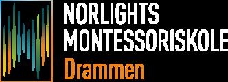 DMS logo hvit